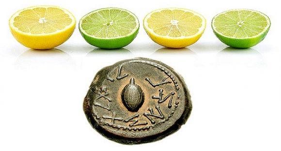 Hur citrusfrukter blev en forntida statusymbol